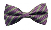 Silk Pre-Tied Bow Tie - Purple with Green Diagonal Stripe ...